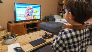 """Un enfant regarde le dessin animé """"La Pat'Patrouille"""", à Mireval (Hérault), le 26 décembre 2019. (NICOLAS GUYONNET / HANS LUCAS / AFP)"""