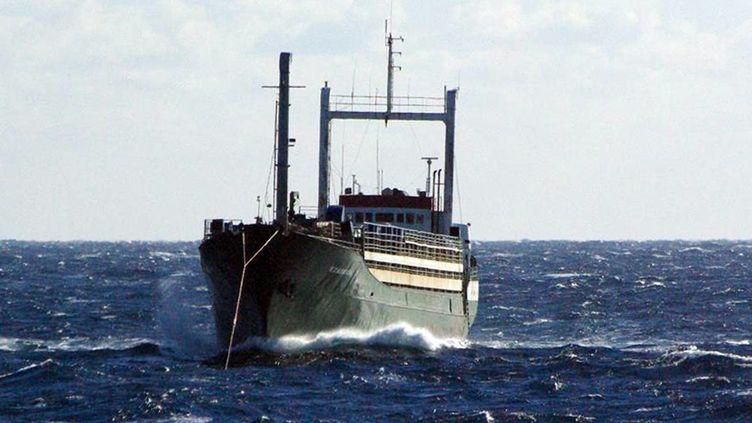 """Le cargo """"Ezadeen"""" avec 450 migrants à bord, le 2 janvier 2015, à 40 kilomètres au large de Crotone (Italie). (ICELANDIC COAST GUARD / AFP)"""