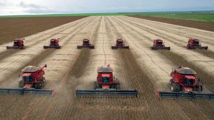 Agriculture intensive ultra-mécanisée (Brésil) ou agriculture familiale qui génère de nombreux emplois. (AFP PHOTO / Yasuyoshi CHIBA)