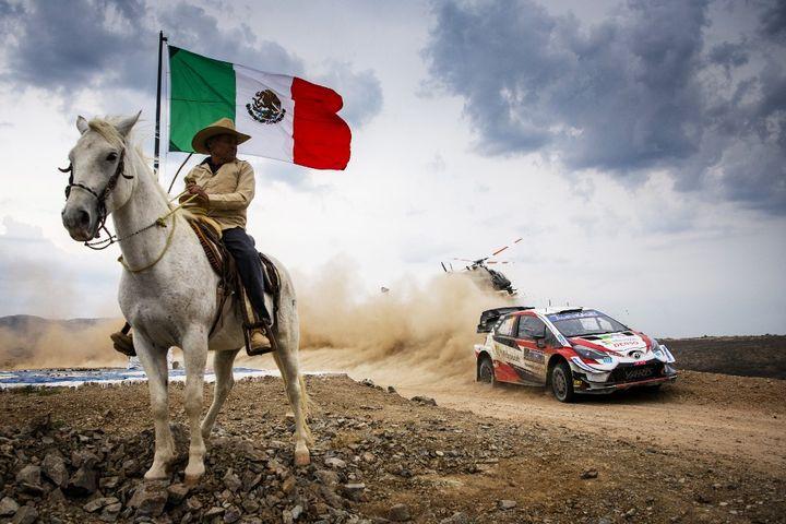 14 mars 2020, Mexique. Sébastien Ogier et Julien Ingrassia au volant de leur Toyota Yaris WRC sur les routes mexicaines. (JAANUS REE / RED BULL CONTENT POOL)