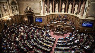 Le Sénat lors d'une session de questions au gouvernement, le 10 mars 2021, à Paris. (ANTONIN BURAT / HANS LUCAS / AFP)