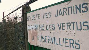 JO de Paris 2024 : à Aubervilliers, des familles se battent pour préserver leur jardin ouvrier (FRANCE 3)