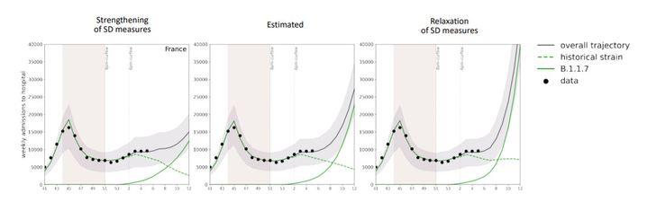 """Les points correspondent aux données déjà connues, la ligne pointillée correspond à la souche historique, la ligne continue verte au variant dit """"britannique"""" et la ligne noire cumule les deux. (INSERM)"""