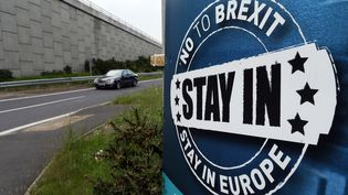 Une affiche anti-Brexit à Newry, en Irlande du Nord, le 7 juin 2016. (PAUL FAITH / AFP)