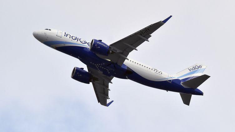 Un A320 de la compagnie aérienne indienne Indigo. (PASCAL PAVANI / AFP)