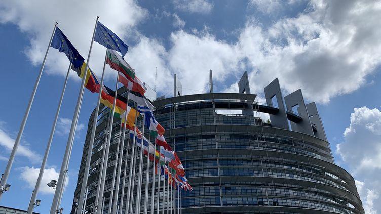 Le Parlement européen à Strasbourg. Photo d'illustration. (JULIEN PASQUALINI / FRANCE-INFO / RADIO FRANCE)