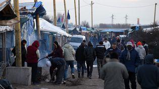 """La """"jungle de Calais"""" (Nord), le 23 février 2016. (MAXPPP)"""
