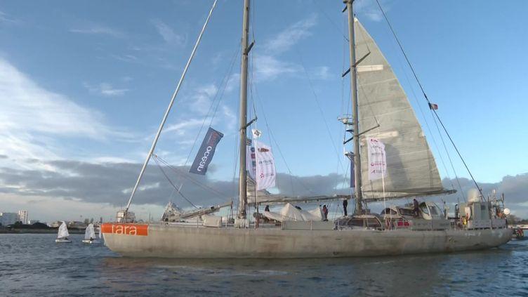 La goélette Tara dans les eaux du port de Lorient en Bretagne. (France info)