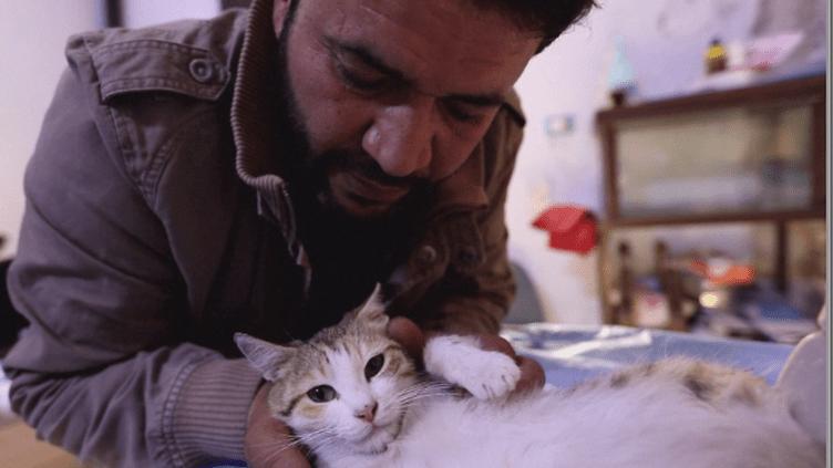 Malgré la guerre, un Syrien monte un refuge pour chats (France24)