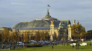 Le musée du Grand Palais à Paris. (MATTES REN? / HEMIS.FR / HEMIS.FR)