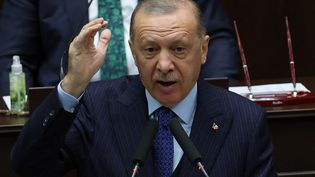 Le président turc Recep Tayyip Erdogan à l'Assemblée nationale à Ankara (Turquie).  (ADEM ALTAN / AFP)