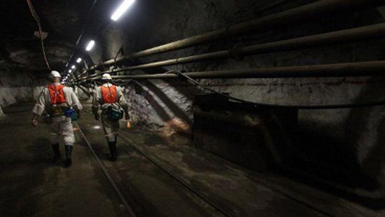 Dans la mine de platine de Phokeng (nord-ouest de Johannesburg) le 19 janvier 2011 (AFP - PABALLO THEKISO)