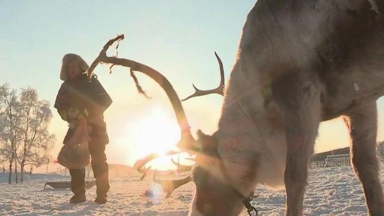 Les Samis sont l'un des derniers peuples indigènes d'Europe. Éleveurs de rennes en Laponie, ils sont devenus les protecteurs de la nature. (France 2)