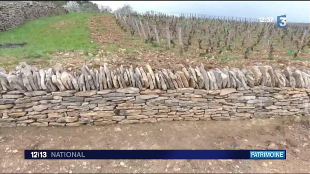 Côte-d'Or : Des murs en pierre sèche pour protéger les vignes