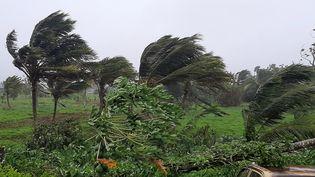 2020 a été une saison record avec 30 tempêtes tropicales dont 13 se sont transformées en ouragan (six majeurs). Ici le cyclone Ana dans les îles Fidgi, le 31 janvier 2021. (LEON LORD / AFP)