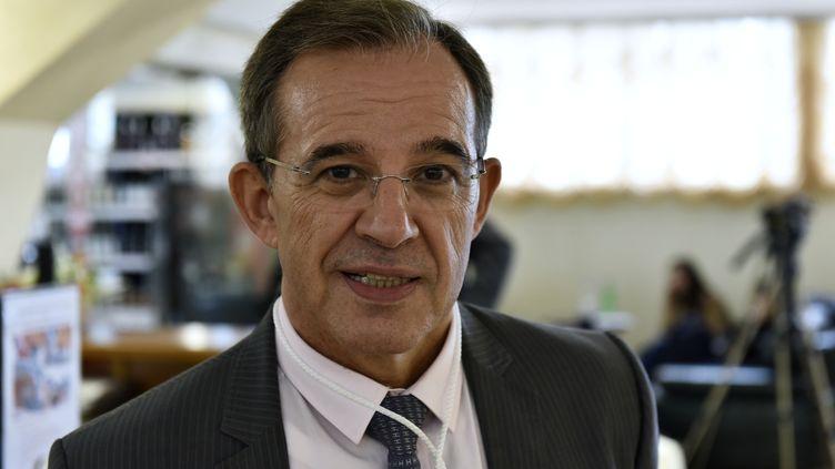 L'ex-député des Français de l'étranger Thierry Mariani, à Yalta, en Crimée, le 11 juin 2017. (ALEXANDR POLEGENKO / SPUTNIK / AFP)