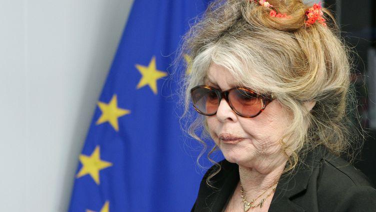 Brigitte Bardot à la Commission européenne de Bruxelles, le 9 juin 2006. (FRANCOIS LENOIR / REUTERS)