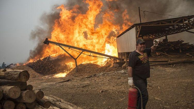 La justice a ouvert une enquête pour déterminer les causes de ces incendies, qui seraient à 90% le résultat de l'action humaine, souvent des actes de négligence ou criminels. (MARTIN BERNETTI / AFP)
