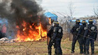 """Policiers anti-émeute se tiennent près d'une cabane lors du démantèlement de la zone sudde la """"Jungle"""" de Calais (Pas-de-Calais), le 29 février 2016. (PHILIPPE HUGUEN / AFP)"""