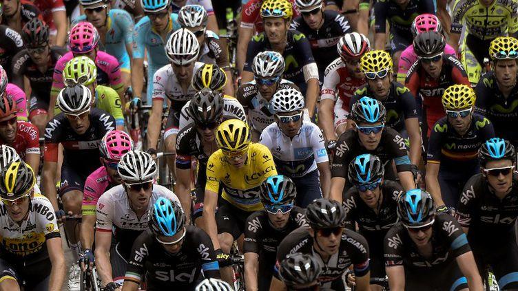 Le peloton du Tour de France  (LIONEL BONAVENTURE / AFP)