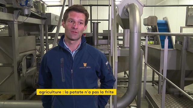 Vidéo. Les producteurs de pomme de terre n'ont pas la frite