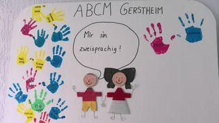 Ecole immersive alsacien-allemand de Gertsheim dans l'Eurométropole de Strasbourg. (CAPTURE D'ÉCRAN FRANCE 3)