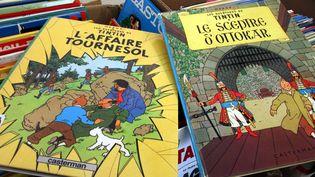 Albums de Tintin dans une librairie de Thionville  (Julio Pelaez / PhotoPQR / Le Républicain Lorrain / MaxPPP)