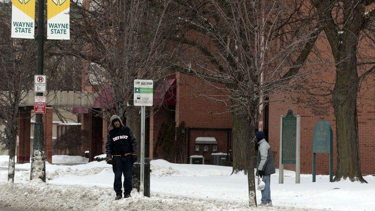 Des chutes deneige à Detroit (Michigan, Etats-Unis), le 29 janvier 2019. (JEFF KOWALSKY / AFP)