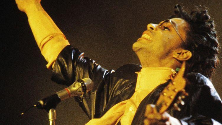 Prince à Bercy le 15 juin 1987  (Bertrand Guay / AFP)