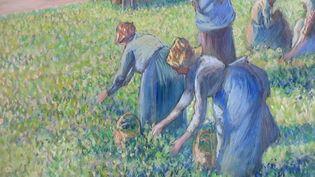 """Une audience s'est tenue mardi 10 septembre à la Cour de cassation de Paris dans l'affaire de """"La Cueillette des pois"""", tableau de Camille Pissarro qui a été volé à un collectionneur juif sous l'Occupation. Les propriétaires Américains s'oppose à la restitution de l'œuvre. (FRANCE 3)"""