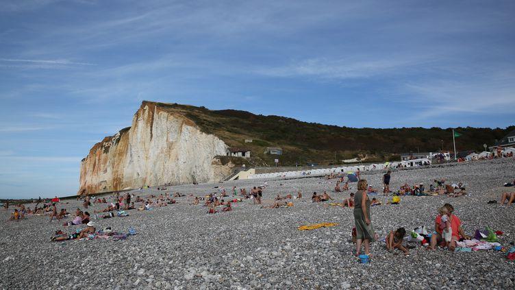 Le site des falaises des Petites Dalles sur la commune de Saint-Martin-aux-Buneaux (Seine-Maritime), le 10 août 2015. (MAXPPP)
