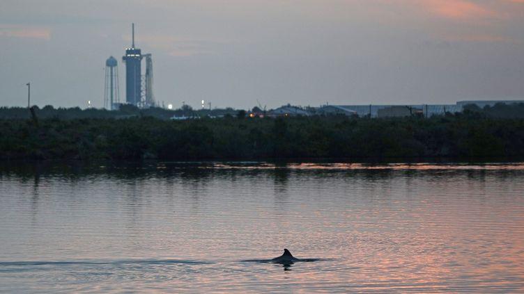 La fusée Falcon 9 surmontée de la capsule Crew Dragon de SpaceX, au Centre spatial Kennedy de la Nasa, en Floride (Etats-Unis), le 27 mai 2020. (GREGG NEWTON / AFP)
