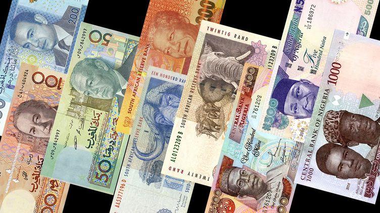 Billets de monnaies de divers pays africains. (Montage FTV)
