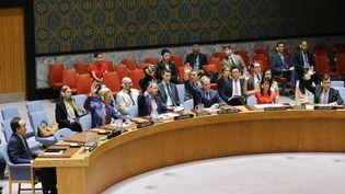 Vote d'une résolution américaine pour mettre en place des sanctions contre la Corée du Nord, au Conseil de sécurité de l'ONU, à New York, le 5 août 2017. (EDUARDO MUNOZ ALVAREZ / AFP)