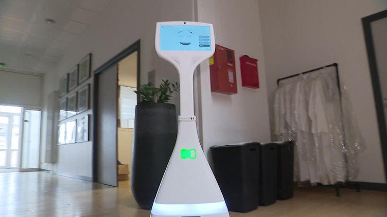 Cutii, un robot d'assistance et de divertissement pour les personnes âgées. (FRANCEINFO)