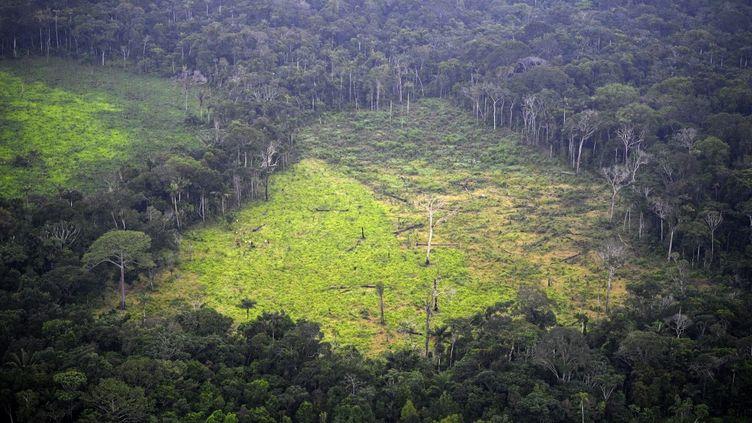Une image aérienne de la déforestation en Amazonie, le3 septembre 2020dans le parc national naturel de La Macarena, enColombie. (RAUL ARBOLEDA / AFP)