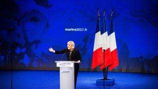 Marine Le Pen en meeting à Lyon, le 5 février 2017. (CHAMUSSY/SIPA)