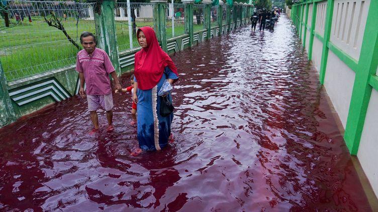 Des habitants d'un village proche dePekalongan (Indonésie) envahi par des flots de couleur rouge sang après des inondations, du fait d'une usine de teinture, le 6 février 2021. (SHAKA / AFP)