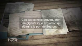 """Envoyé spécial. """"Ces substances provoqueront une gigantesque explosion qui détruira le port de Beyrouth"""": le rapport ignoré d'un lanceur d'alerte (ENVOYÉ SPÉCIAL  / FRANCE 2)"""