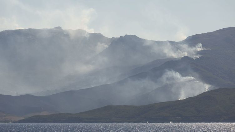 Déjà l'été 2017, des incendies avaient fait des ravages dans le Cap Corse. (MAXPPP)