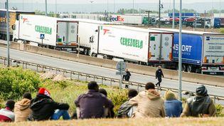 Des migrants attendent près de l'autoroute A16 pour tenter d'accéder au tunnel sous la Manche à Calais (Pas-de-Calais), le 23 juin 2015. (PHILIPPE HUGUEN / AFP)