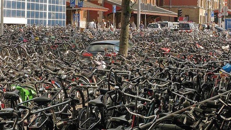 Parking à vélos dans Amsterdam. (DR)