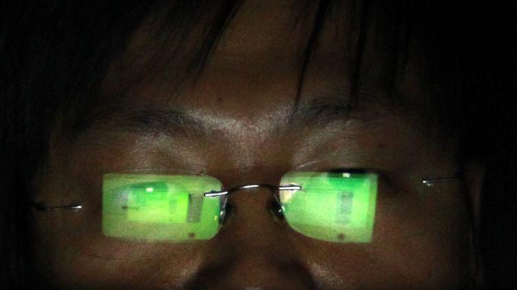 (Des pirates chinois seraient à l'origine d'une nouvelle cyber-attaque visant les données de fonctionnaires américains © Reuters/Pichi Chuang)