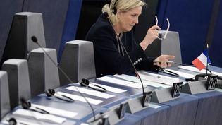 Il est notamment reproché à Marine Le Pen d'avoir salarié sa cheffe de cabinet en tant qu'assistante parlementaire. (FREDERICK FLORIN / AFP)