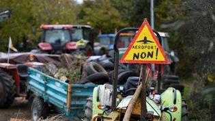 Manifestation d'agriculteurs à Notre-Dame-des-Landes (Loire-Atlantique), contre le projet d'aéroport, le 10 novembre 2016. (DAMIEN MEYER / AFP)