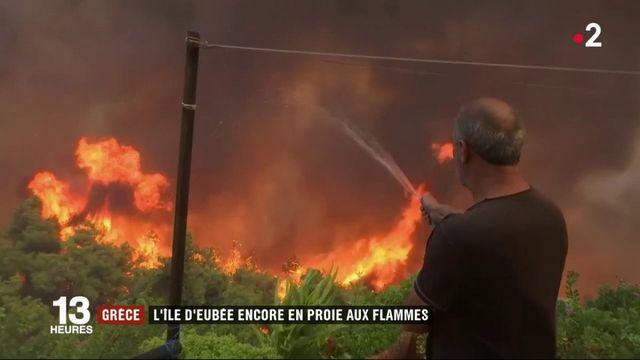 Incendie en Grèce : catastrophe écologique sur l'île d'Eubée
