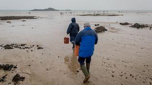 """Des pêcheurs à pied se promènent sur la plage de Plérin en Bretagne, lors de la """"marée du siècle"""", le 21 mars 2015. (GAEL CLOAREC / CITIZENSIDE / AFP)"""