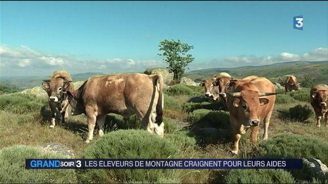 Agriculture : les éleveurs craignent pour leurs aides
