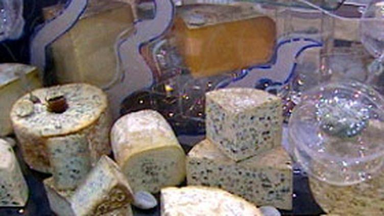 Les fromages au salon de l'agriculture (© Photo france3)