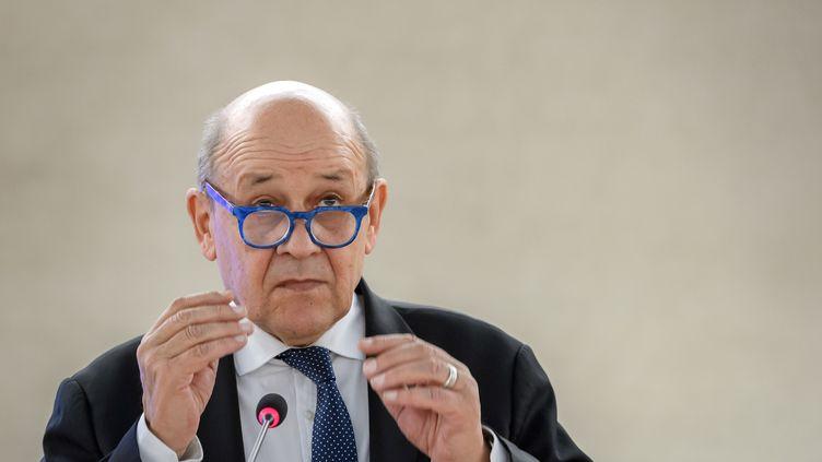 Le ministre des Affaires étrangères, Jean-Yves Le Drian, lors d'un discours à l'ouverture de la principale session annuelle du Conseil des droits de l'homme des Nations unies, le 24 février 2020, à Genève (Suisse). (FABRICE COFFRINI / AFP)